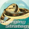 日興GAMエマージングストラテジー・ファンド(毎月分配型)が1位 | ヘッジファンド戦略型投資信託ランキング  (2017年03月09日)